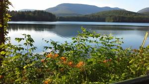 Coopet Lake, Woodstock, NY