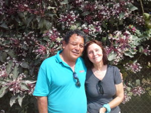 A photo of a man and woman standing in front of a large bush with pink flowersin the cayo district of Belize